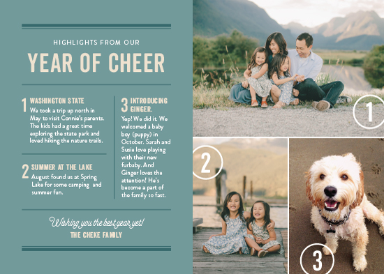 new year's cards - Newsworthy by Ann Gardner