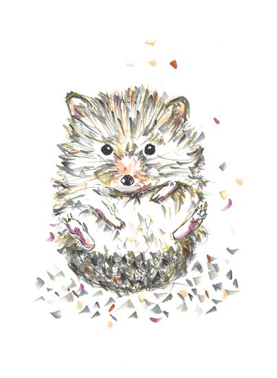 art prints - Roll like a hedgehog by gukuuki