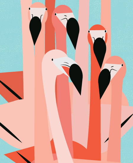 art prints - The Flamingos Are Staring by Marie Hermansson
