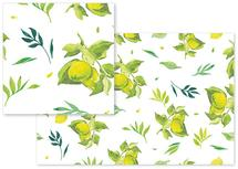 Lemons and leaves by Santie Amery
