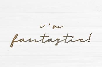 I am Fantastic