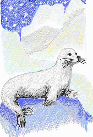 art prints - Seal by Christina DeHayes
