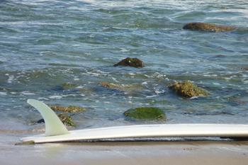 Surfboard 3, Malibu