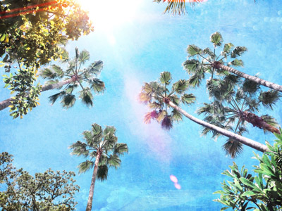 art prints - LA Daze by Regan Daniels