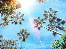 LA Daze by Regan Daniels