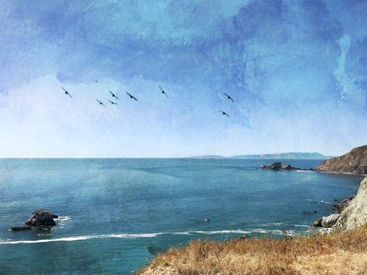 art prints - California Coast by Regan Daniels