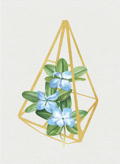 art prints - Blue Terrarium by Danielle Huggins