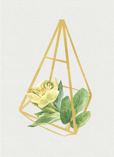 art prints - Yellow Terrarium by Danielle Huggins