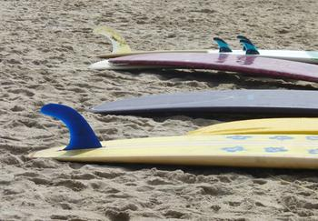 Surfboard 2 , Venice Beach