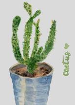 Cacti Love by Melissa Hyatt