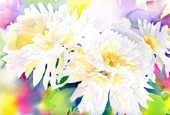 art prints - Mums in white by Melissa Hyatt