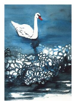Indigo Swan