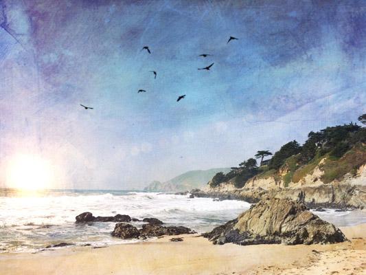 art prints - Sunset Beach by Regan Daniels