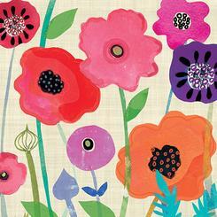 Multicolour poppies