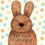 sleepy bunny by Diane Eichler