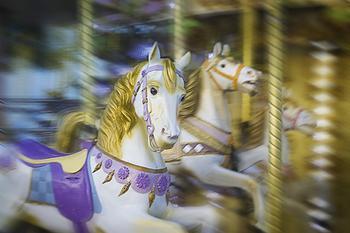 The white carousel horse