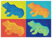 Pop-a Bear by Denise Cupoli