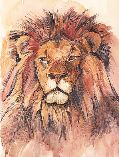 art prints - African Lion by Santie Amery