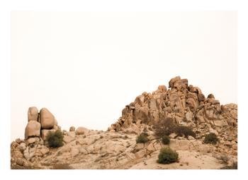 Desert Gathering 2