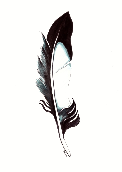 art prints - Magpie Feather by Kristina Heredia