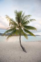 Bora Bora by Crystal Lynn Collins
