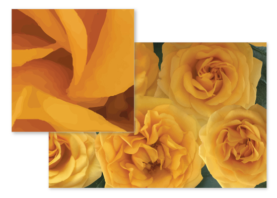 fabric - Yellow Roses by Emma Marson