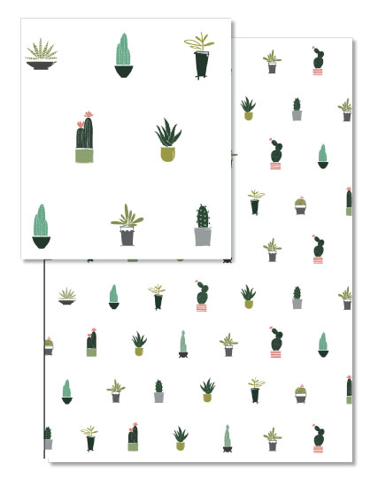 - Cacti Collection by Rae Kaiser