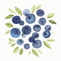 Watercolor Blueberries