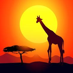 Sunset with Giraffe