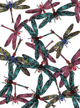 Dragonfly Freeway