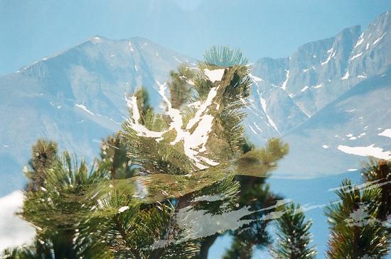 art prints - Rocky Mountain Day Dream by Sasquatch Mansfield