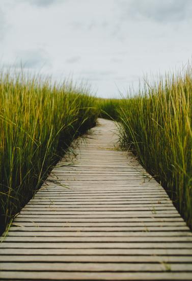 art prints - The Boardwalk by Helen Makadia Photography