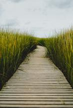 The Boardwalk by Helen Makadia Photography