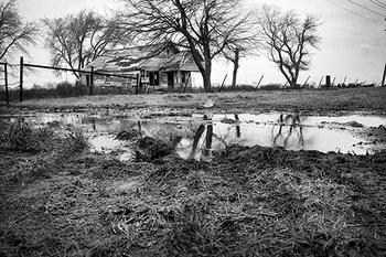Mud & Decay