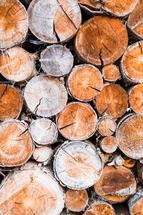 Blocks of wood by Magdalena Kucova