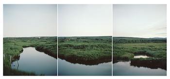 Marsh (Iceland)