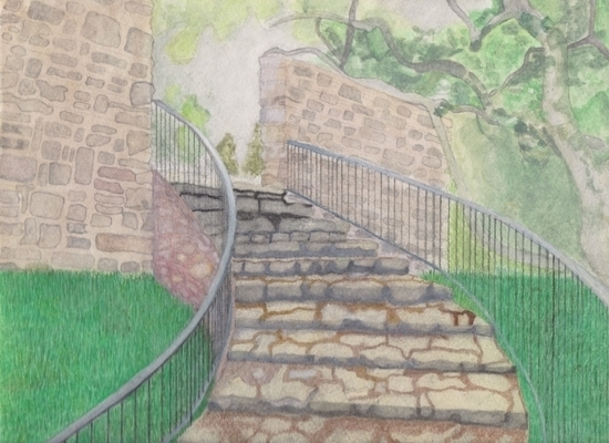 art prints - Nature's Stairway by Tyler Jones