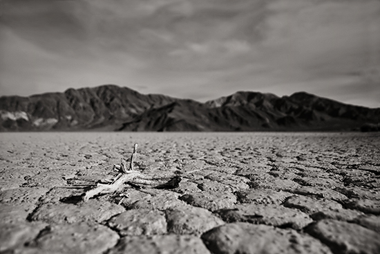 art prints - Death Valley by Debbie Shiffer