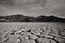 Death Valley by Debbie Shiffer
