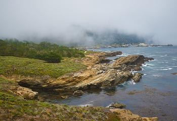 Point Lobos-1