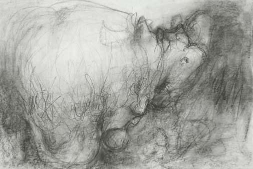 art prints - Hepatic Hippo by Janie Allen