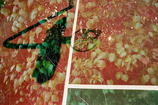 art prints - Degradation by Sasquatch Mansfield