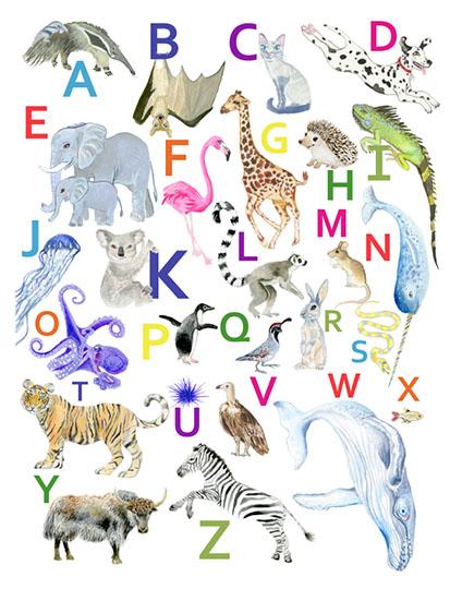 art prints - animal Alphabet by Diana Luu
