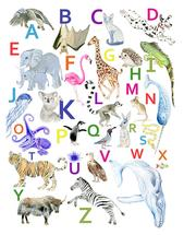 animal Alphabet by Diana Luu
