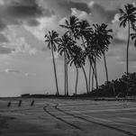 Paradise by Lu Haddad