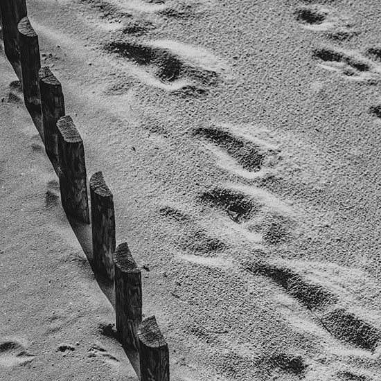 art prints - Path in the sand by Lu Haddad