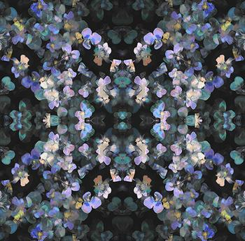Pansy painting - mirrores