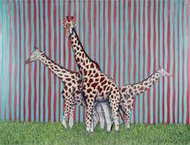 Giraffes(Three of a Kin... by Mark Stokesbury