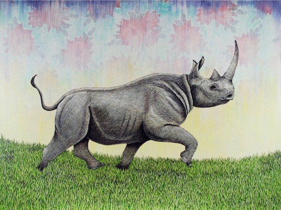 art prints - Rhino in Motion by Mark Stokesbury