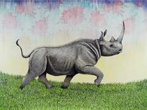 Rhino in Motion by Mark Stokesbury